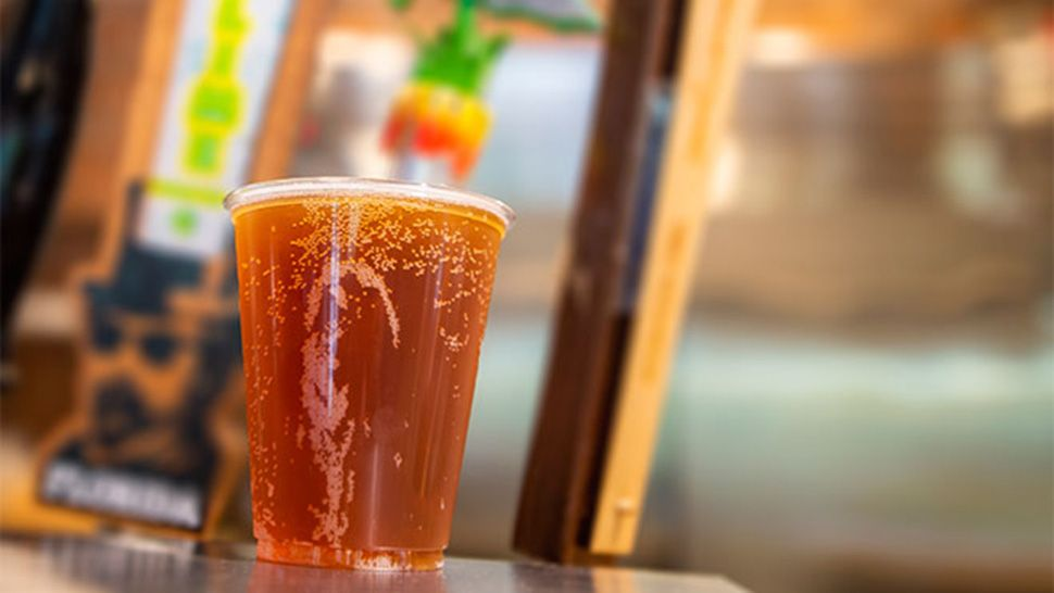 SeaWorld Orlando to Bring Back Free Beer Next Month