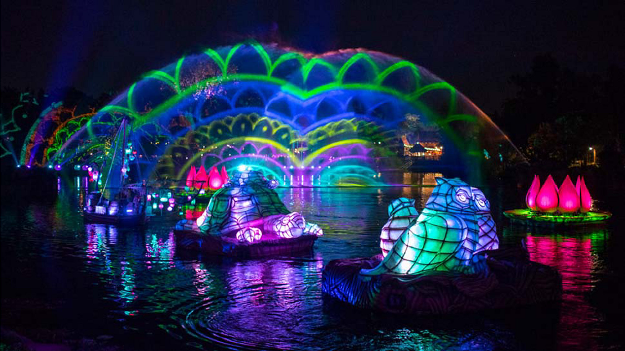Preview Of Updated Rivers Light Show At Animal Kingdom