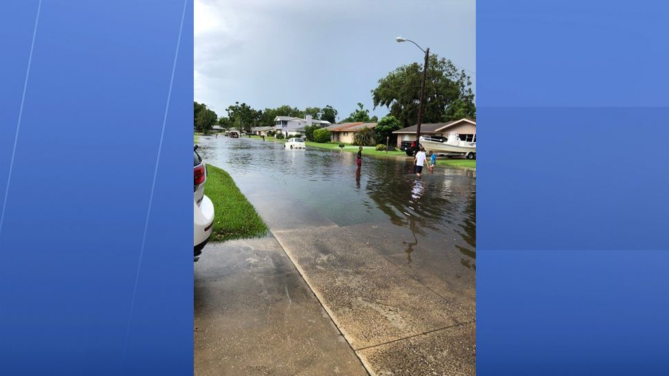 Residents saw flooding in their Port Orange neighborhood after heavy rain Friday. (Melissa Herlehy, viewer)