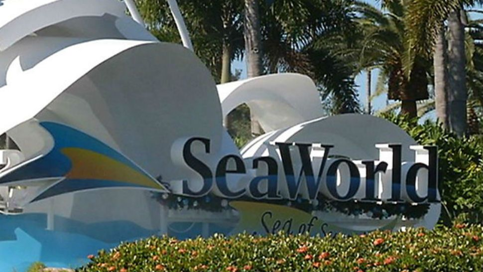 SeaWorld Lays Off 100 Orlando Call Center Employees
