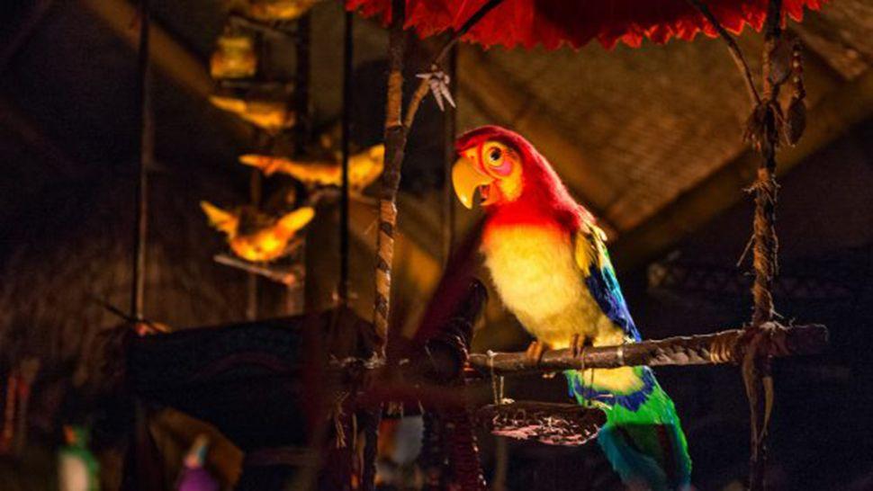 Disney World Refutes Enchanted Tiki Room Overlay Rumor