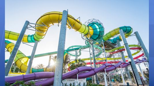 Adventure Island's newest slide, Vanish Point, is a 70-foot drop slide. Riders choose between two wave paths, one that drops the floor from beneath their feet or one that begins in a seated position before taking a steep dive on a 455-foot-long speed slide. (Adventure Island)
