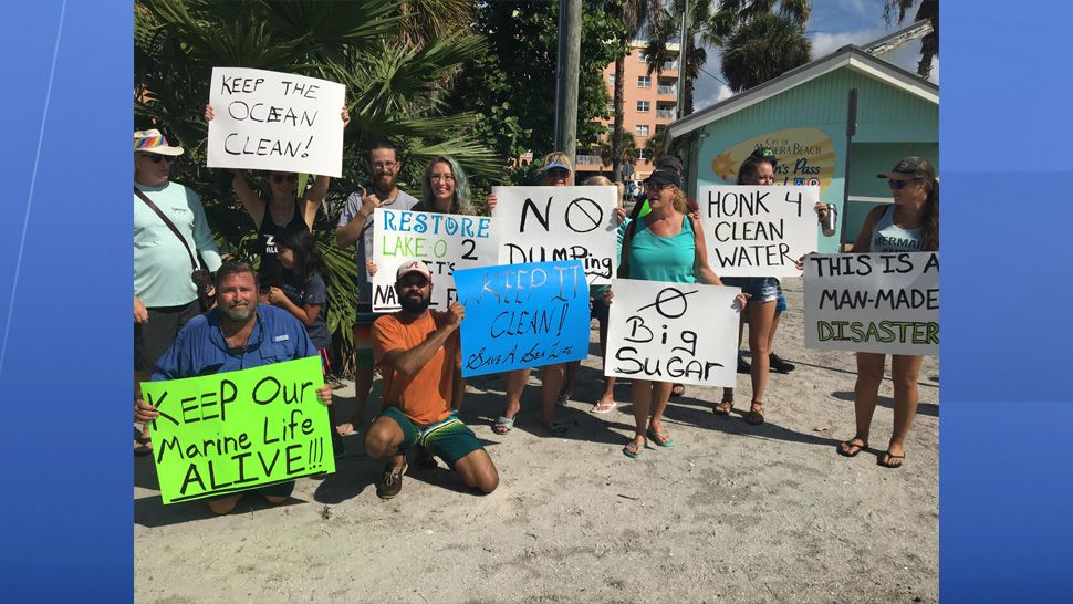 "People from all across Florida joined hands today in a peaceful protest. ""Hands Along the Water"" was a symbolic event to raise awareness about the affects algae blooms can have on our water and marine life. (Jorja Roman, staff)"