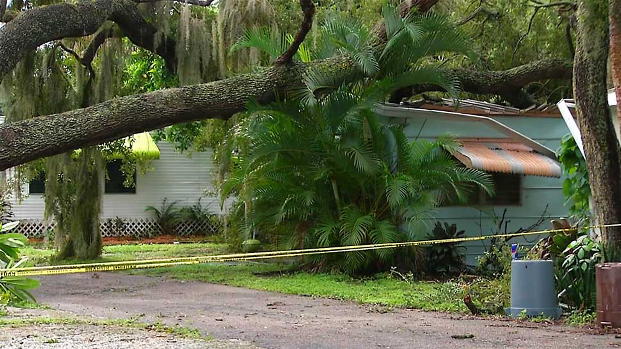 Home Destro by Tree; Property Managers Say Not at Fault on