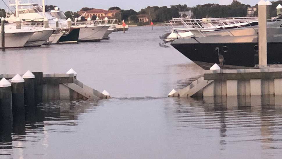 FWC: Pair of Manatees Stuck in Structure at Halifax Marina