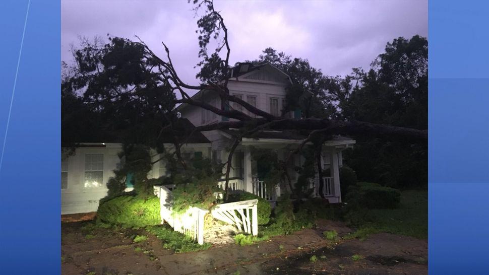 Hurricane damage in Tallahassee
