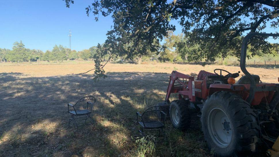 Texas Farmers Prepare For Hemp Growing