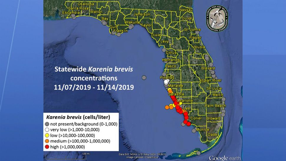 Map Of Florida Red Tide Red Tide | Tampa Florida Local News | Spectrum Bay News 9