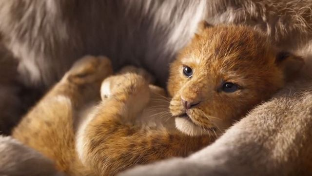 Disney Releases First 'Lion King' Teaser Trailer
