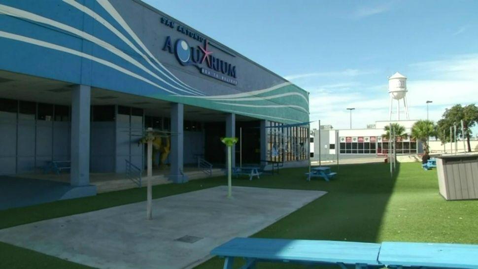 San Antonio Aquarium Temporarily Shut Down
