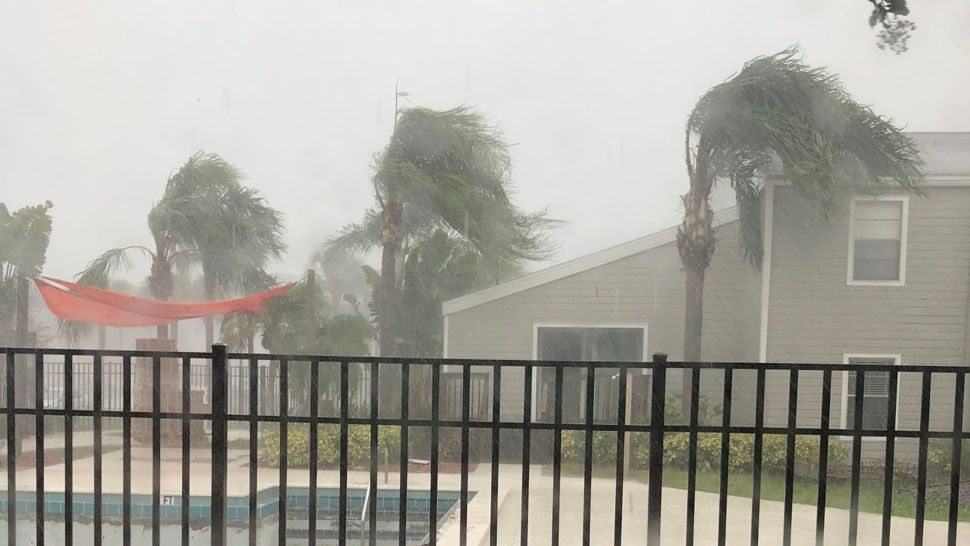Heavy rain in South Tampa while under tornado warning (Courtesy of Michele Cole)