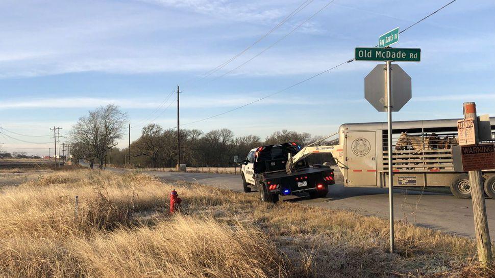 Roseglennorthdakota / Try These Traffic Accident On Hwy 290