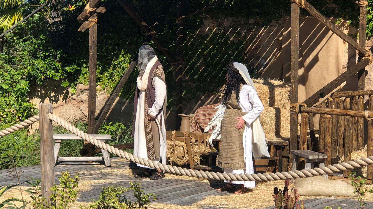 Holy Land Experience Christmas Lights 2020 Florida on a Tankful: Christmas at the Holy Land Experience