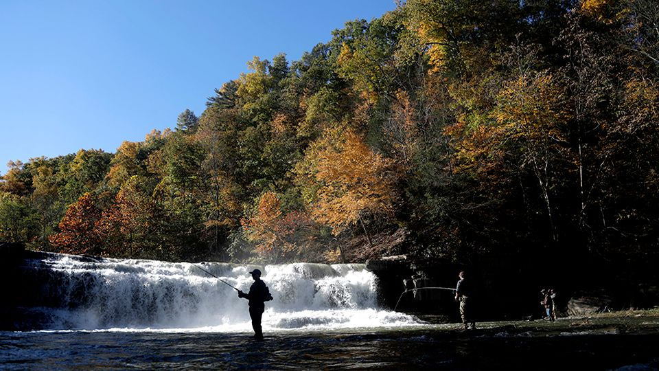 Wilson Foundation Donates To WNY State Parks Projects