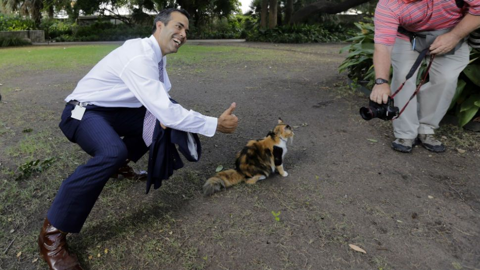 Texas Land Commissioner George P. Bush, left, poses with Bella the official Alamo cat following a news conference to celebrate the $31.5 million the General Land Office received for the preservation and development of the Alamo, Wednesday, Sept. 2, 2015, in San Antonio. (AP Photo/Eric Gay)