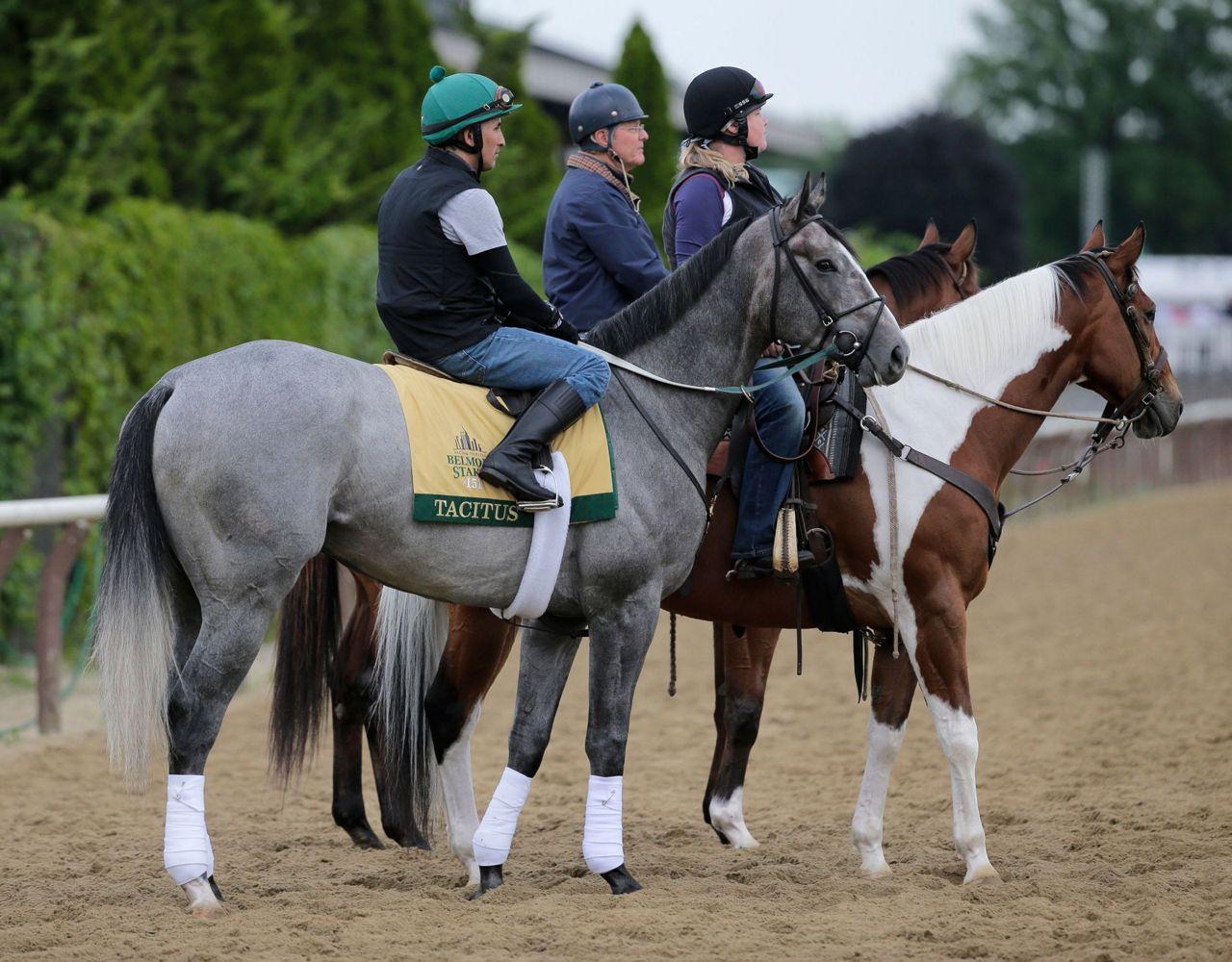 2019 belmont stakes horses