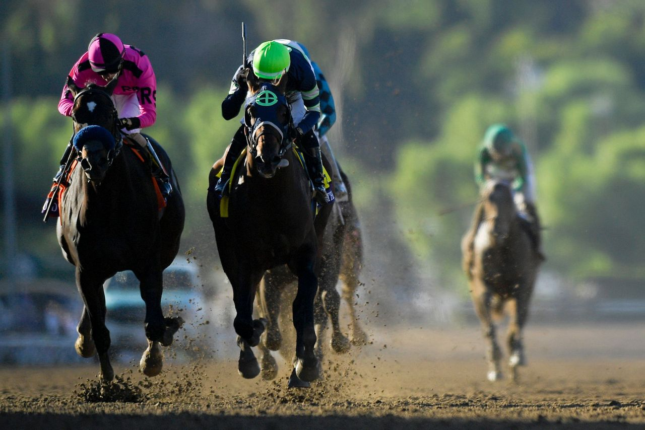 Storm The Court Scores 45 1 Upset In Breeders Cup Juvenile