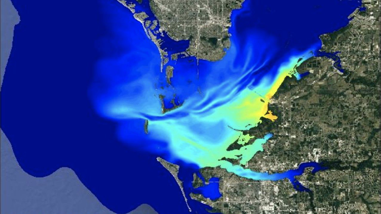 USF researchers use models to predict Piney Point wastewater spread