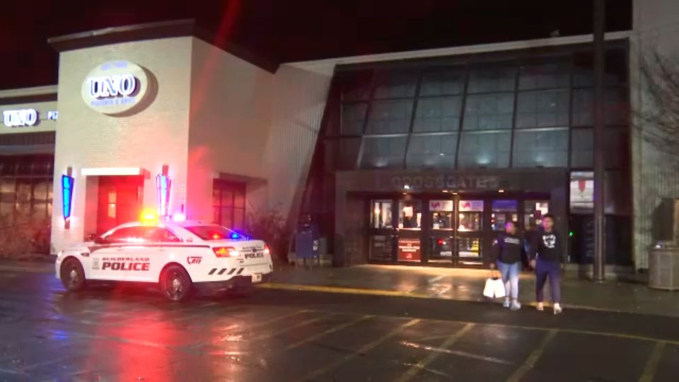 Three Teens Arrested for Fight at Crossgates Mall