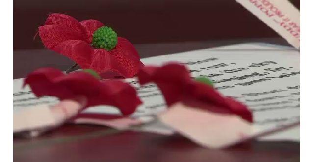 Meaning of poppy flower mightylinksfo