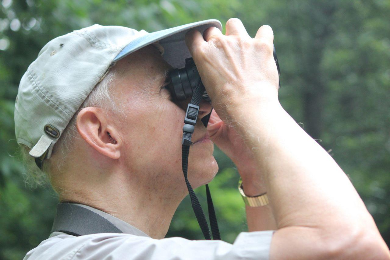 bird-watcher