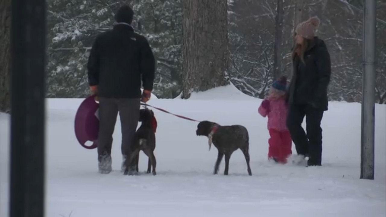Folks enjoying the snow in Chestnut Ridge.