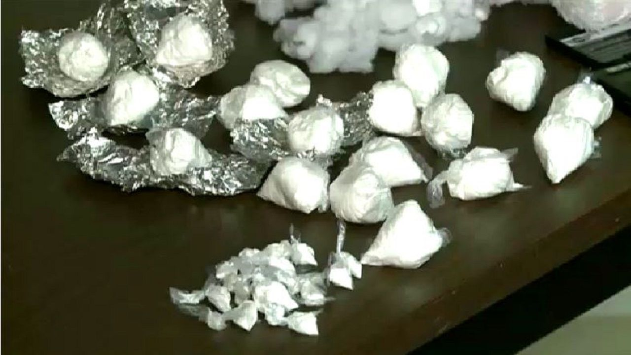 Williamson Co  Traffic Stop Yields $225K in Cocaine