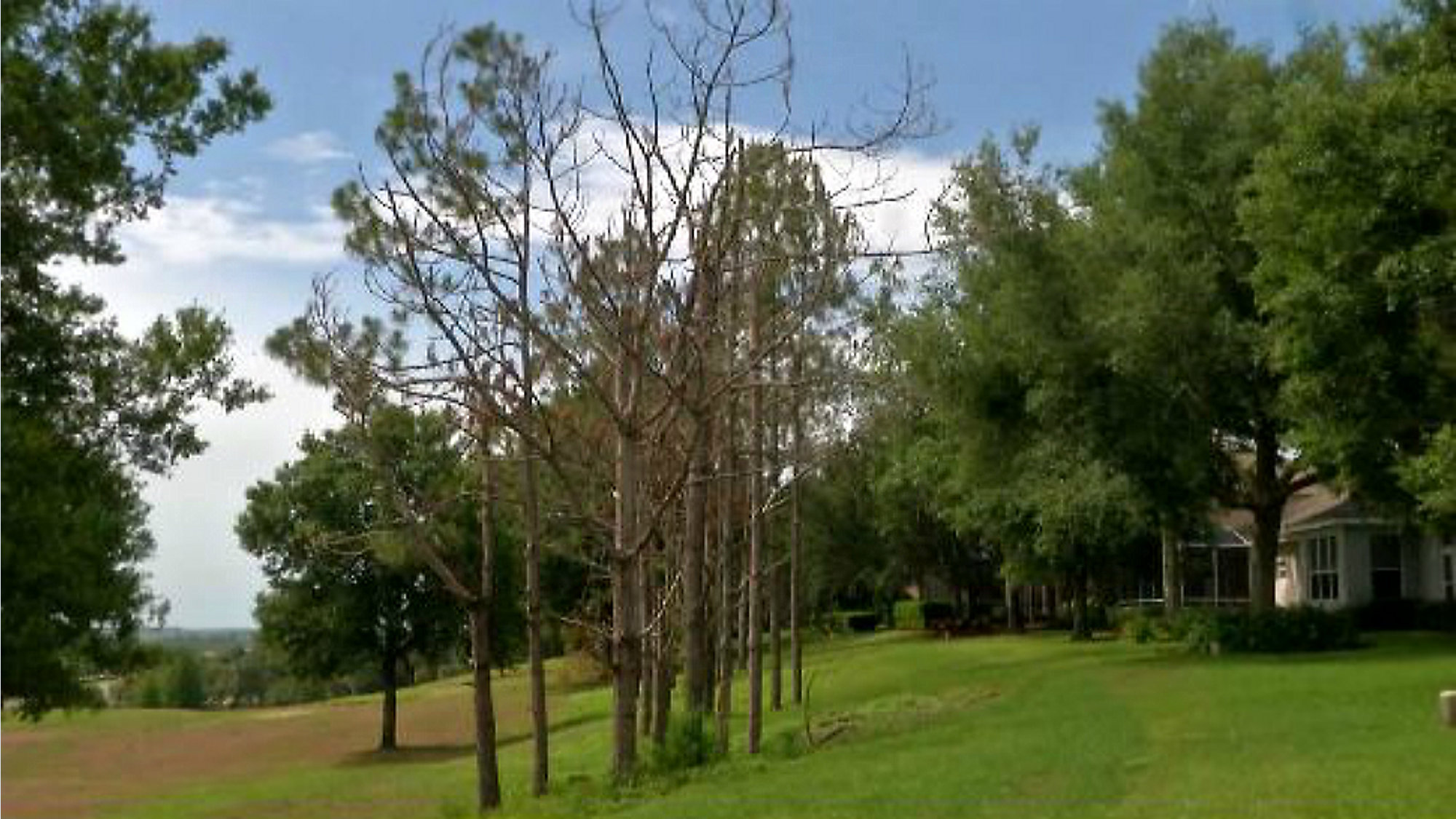 Lake County | Orlando Florida Local News | Spectrum News 13