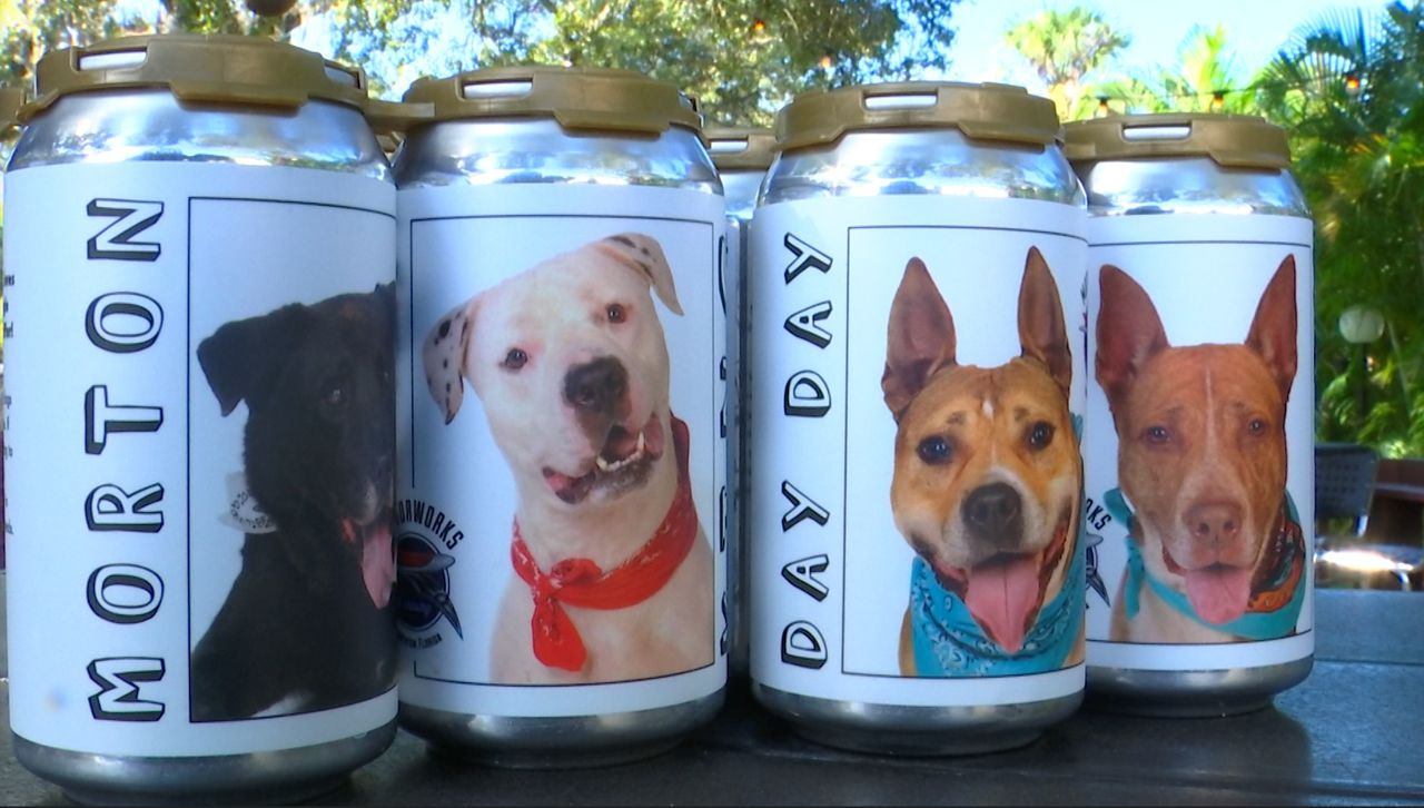 Bradenton Brewery Puts Dogs in Need of Homes on Beer Cans