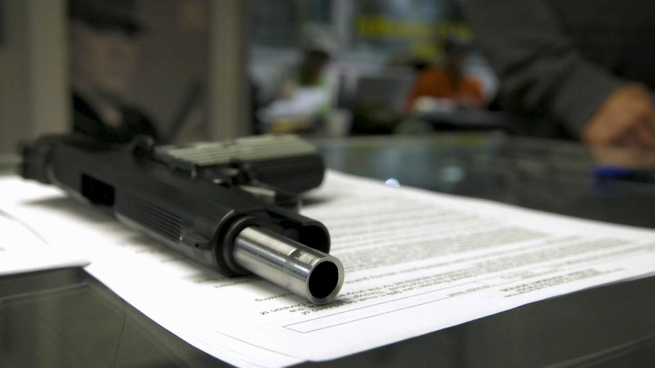 Legislature Passes Bills to Make NY's Gun Laws Even Stricter