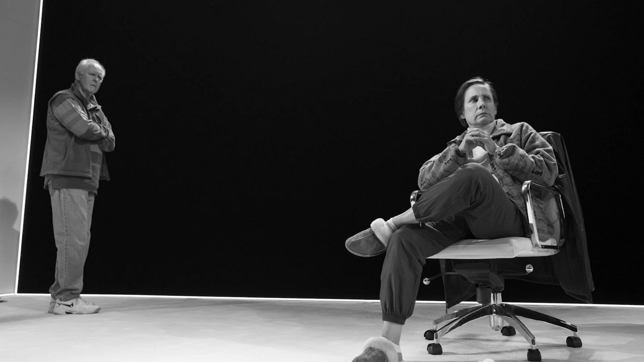 Theater Reviews: 'Hillary and Clinton'