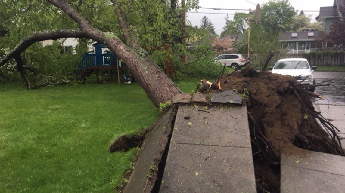 hudson valley storm damage 2