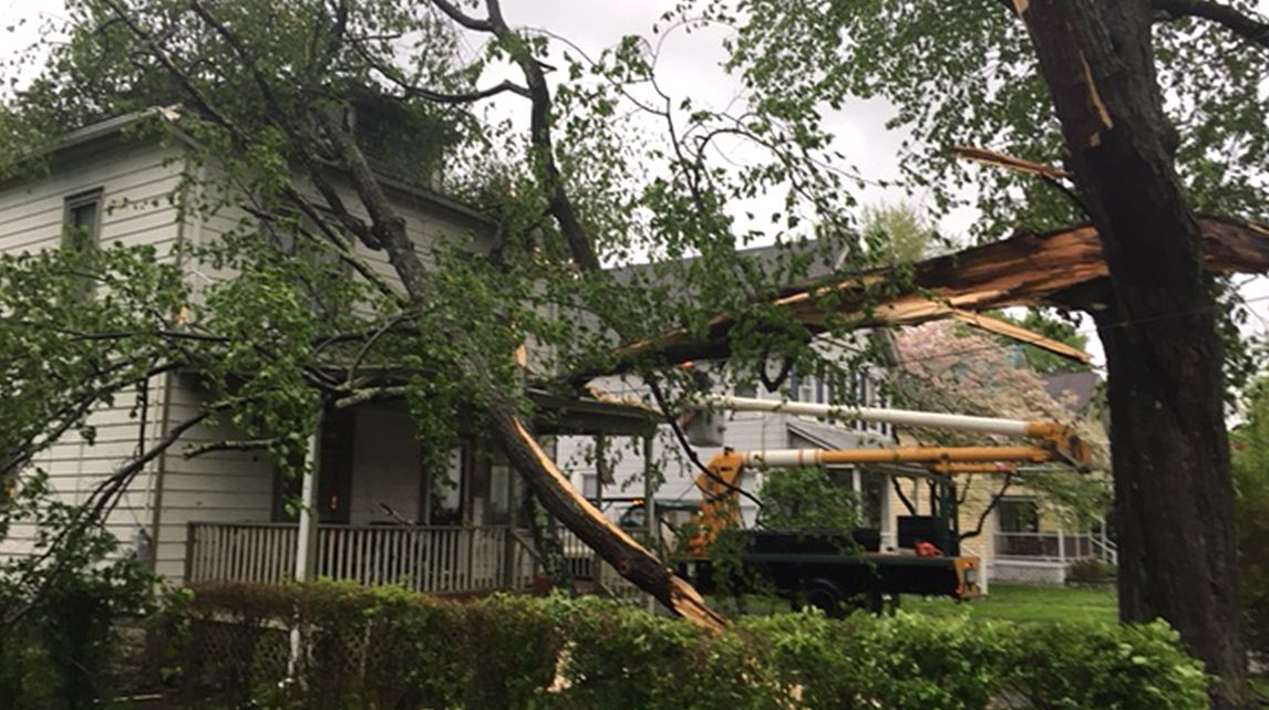 hudson valley storm damage 3