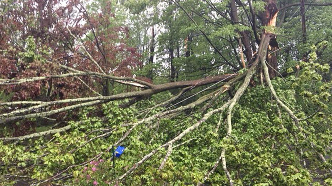 hudson valley storm damage 4