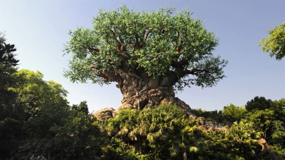 Disney's Animal Kingdom to Celebrate Earth Day's 50th Anniversary