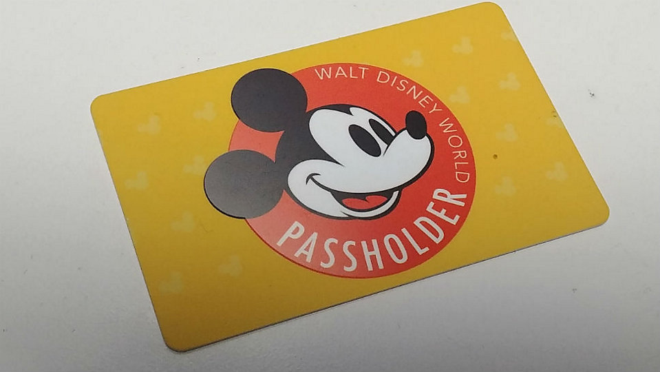 Disney World annual pass