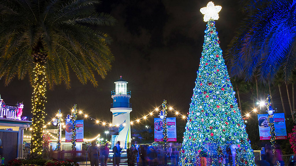 Christmas lights at SeaWorld San Antonio (Spectrum News/File) - Thanksgiving Festivities Around San Antonio