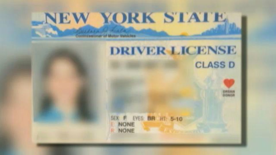 Officials and Cuomo's License Plate Replacement Program
