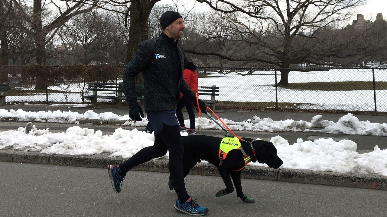 Three Guide Dogs to Help Blind Man Navigate the NYC Half Marathon