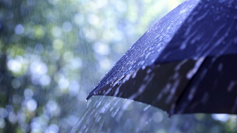 FORECAST: Strong winds expected, along with soggy weather