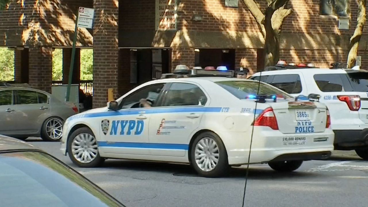 rocco ccrb nypd carpng.'