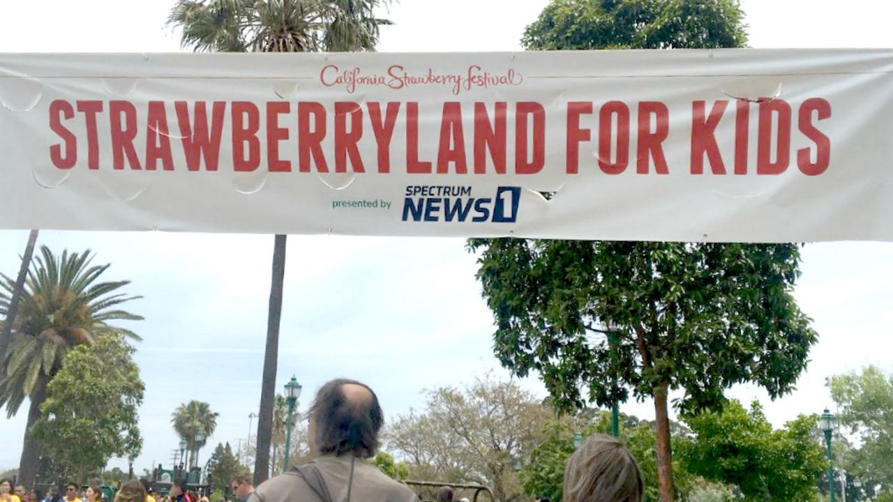 Strawberryland for Kids with Spectrum News 1 at the California Strawberry Festival