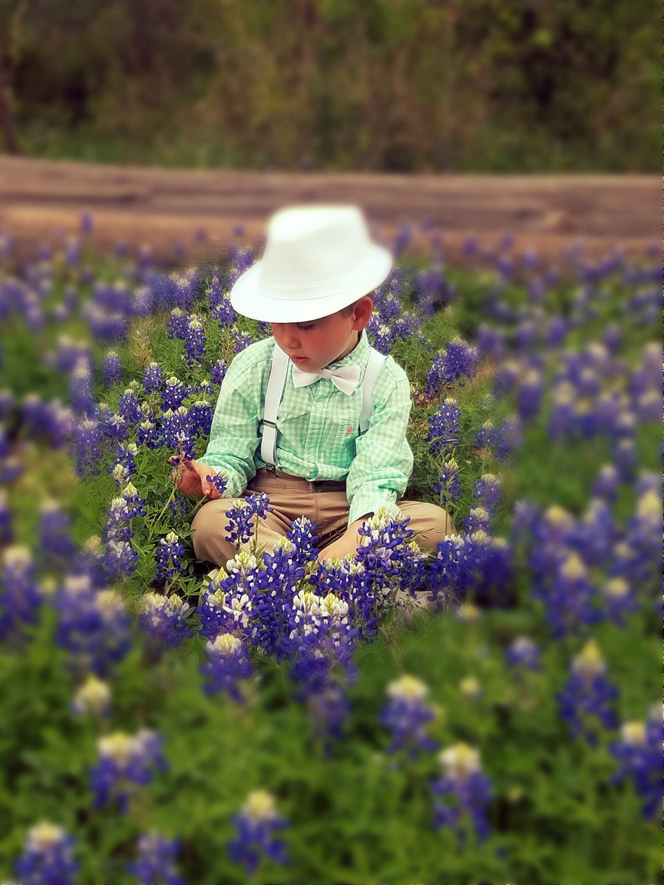 Boy in the wildflowers.