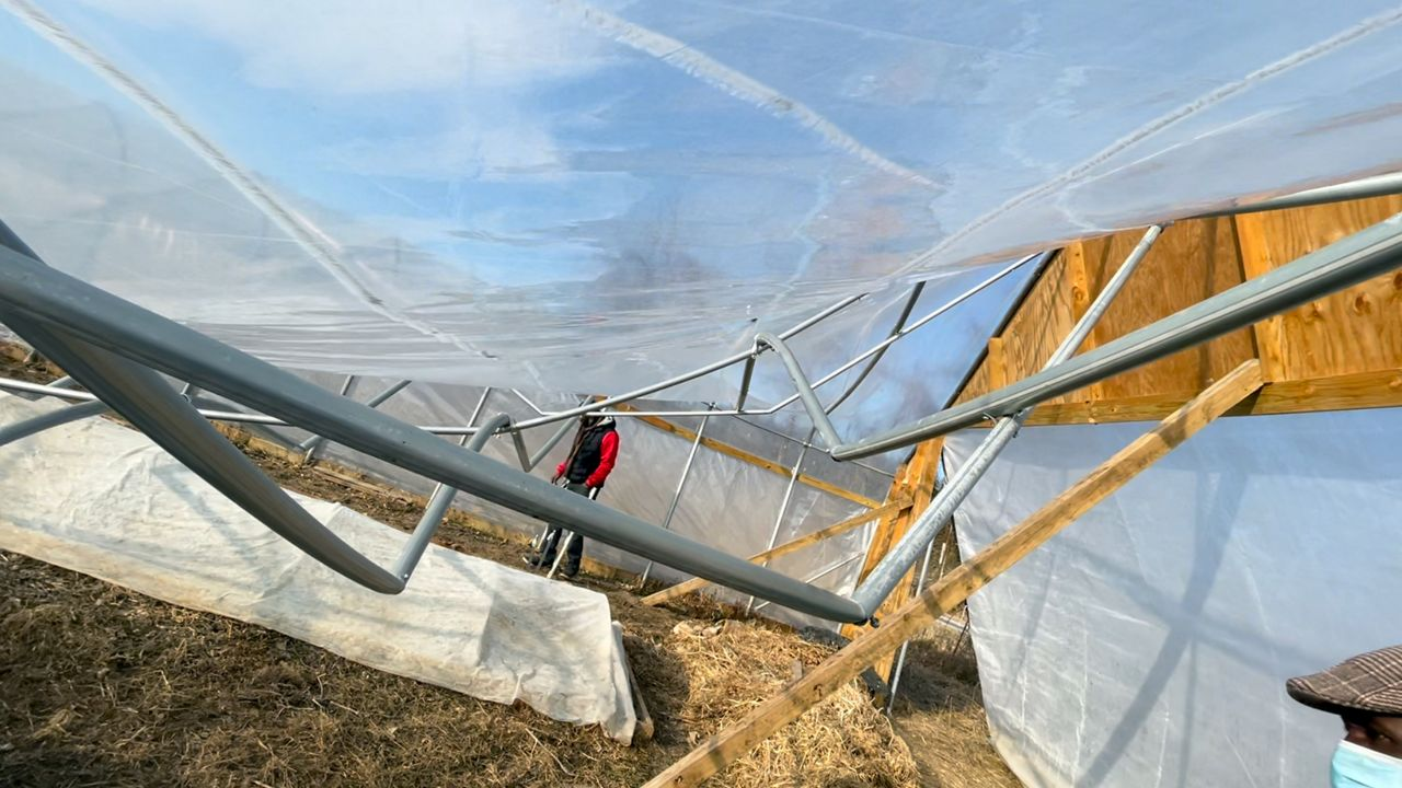 Ever Growing Family Farm Loses Greenhouse In Snow Storm
