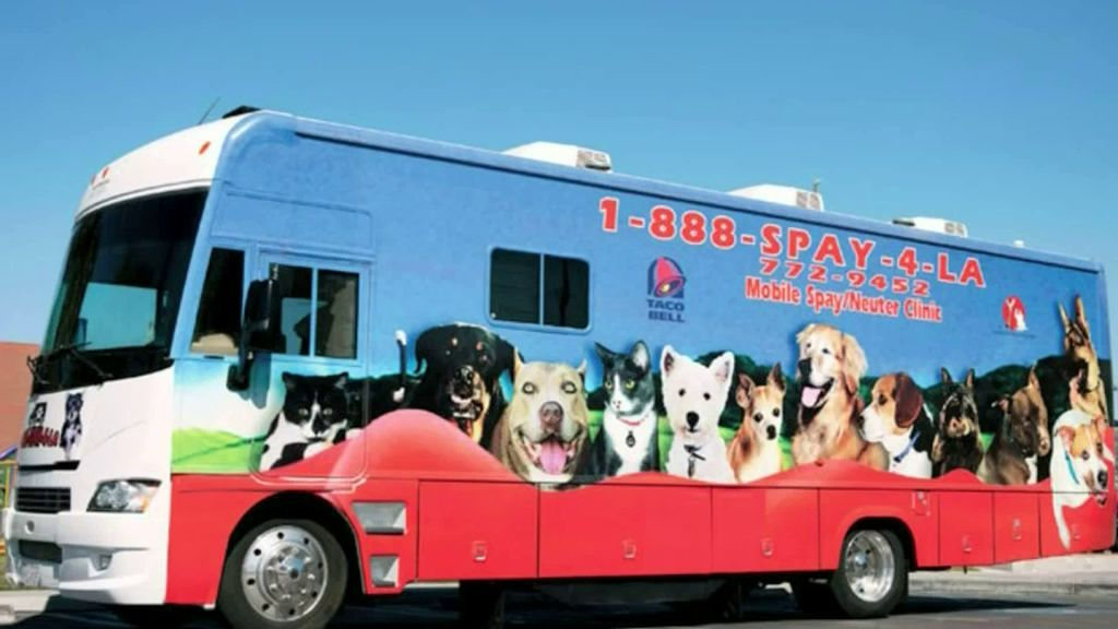 Los Angeles County Unveils New Low-Cost Mobile Spay, Neuter