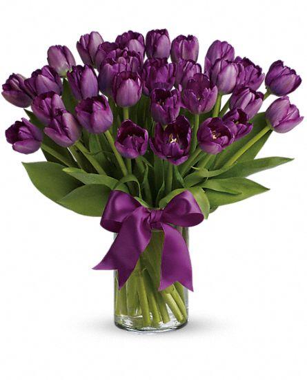 bouquet tulipes violettes captivantes, bouquet de fleurs tulipes
