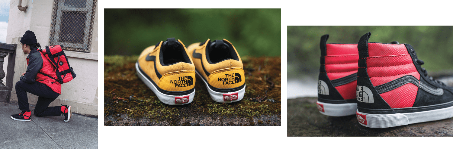 vans the north face scarpe