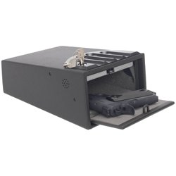 Mini Vault 2-Gun Safe118191480