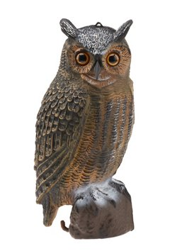 Game Winner® 3-D Owl Decoy