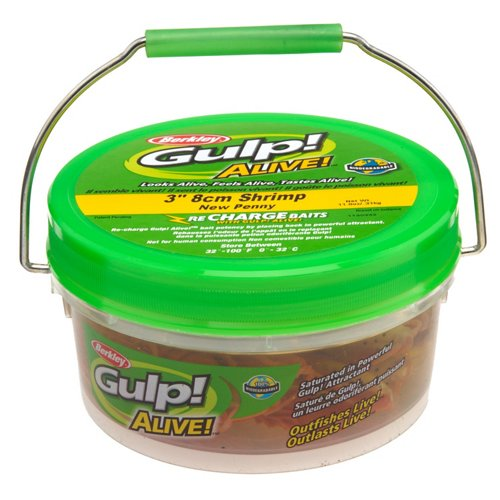 Berkley® Gulp!® Alive!™ 3' Shrimp Small Bucket